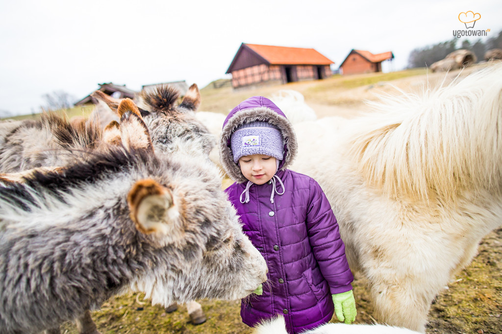Pałac Galiny  - Farma zwierząt miniaturowych